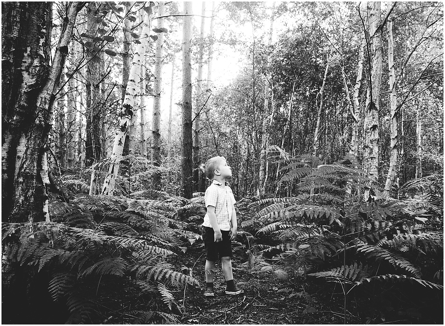 boy with fern in woods ashford kent family photographer