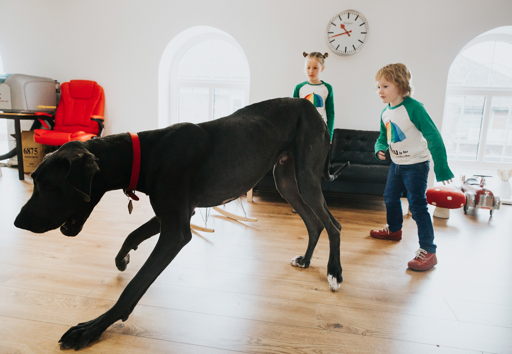 AUNTIE MIMS WORKSHOP KENT GREAT DANE CHILDREN