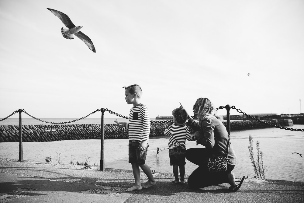 boys and seagull black and white - Family Photographer Kent
