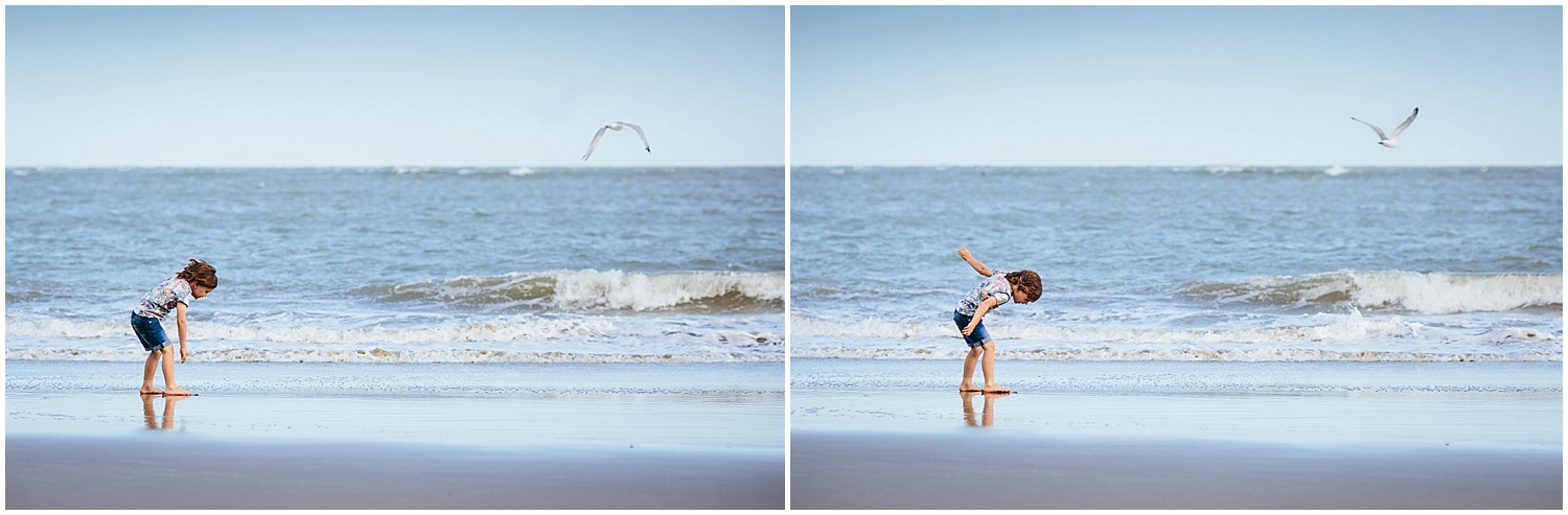 boy with seagull on sunny sands beach folkestone kent family photography