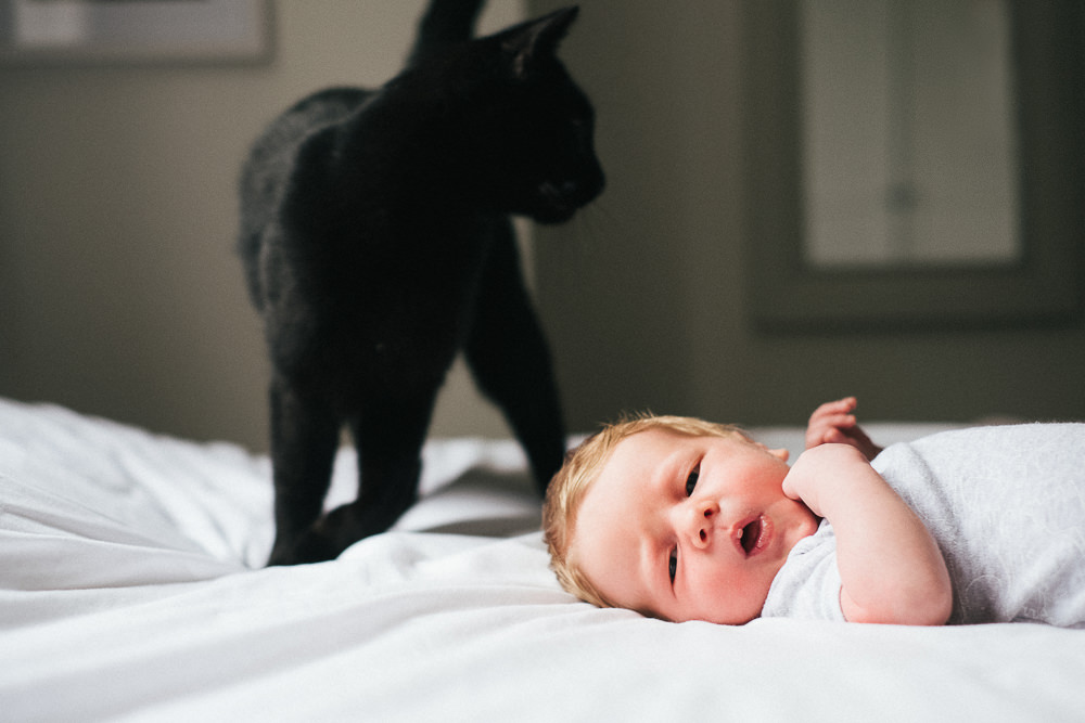 NEWBORN PHOTOGRAPHER LONDON AND KENT BABY BOY AND BLACK CAT ON BED
