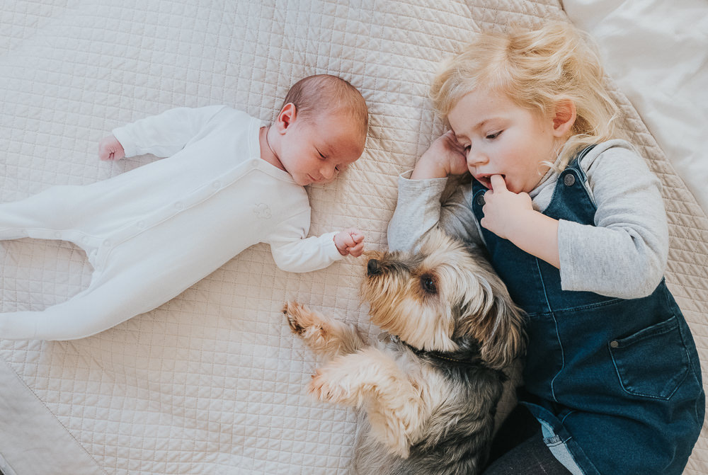 NEWBORN PHOTOGRAPHER LONDON AND KENT SIBLING AND DOG PORTRAIT ON BED