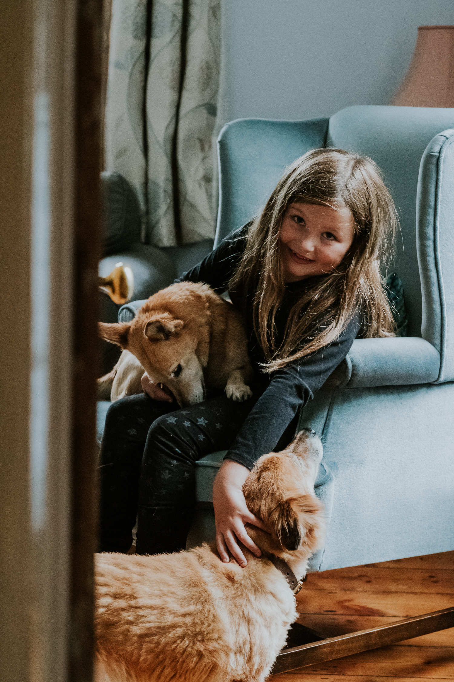 girl with dogs sitting on antique chair summer family photos