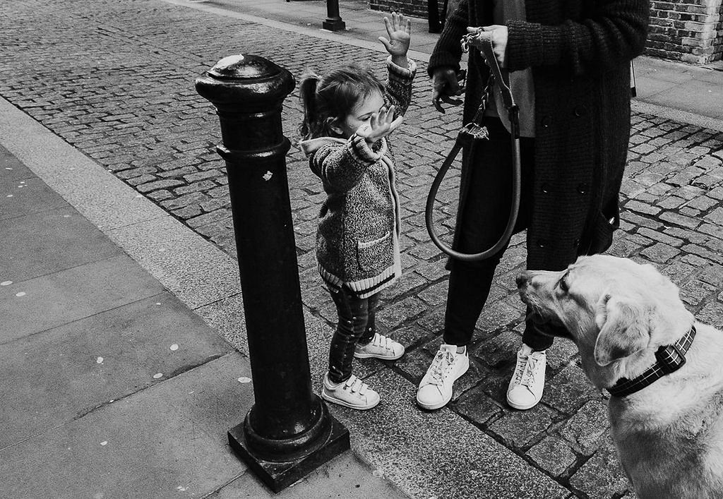toddler girl with pet dog in London