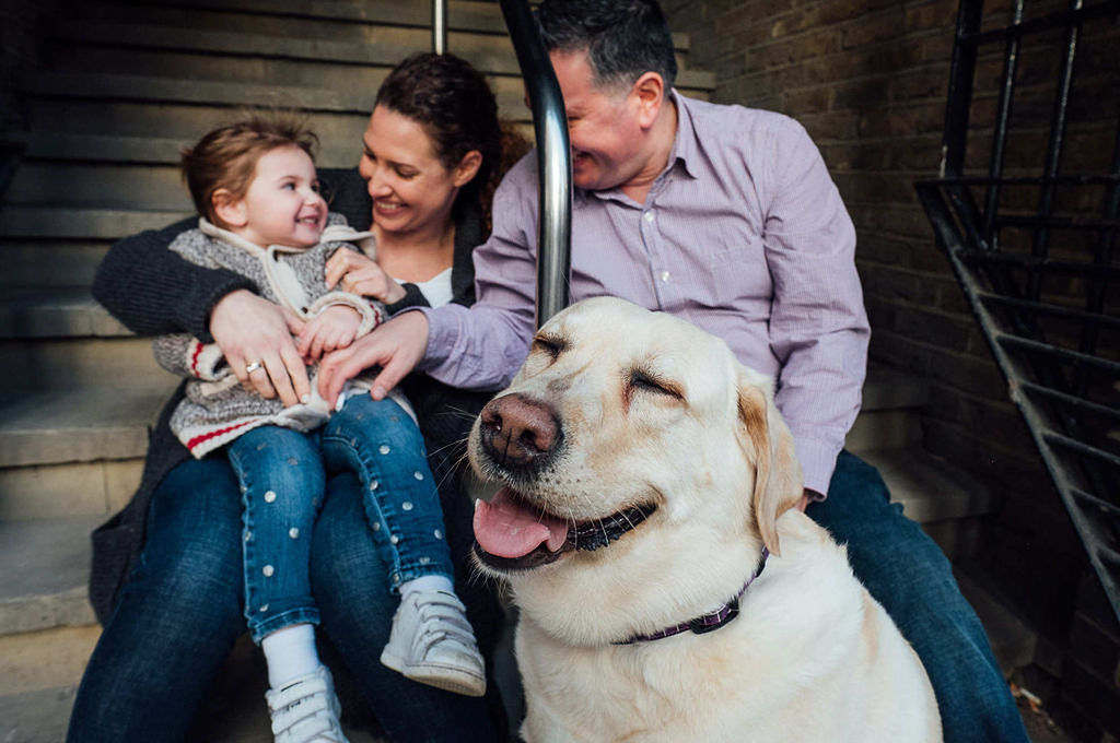 london family photographs parents and toddler with dog sitting on steps