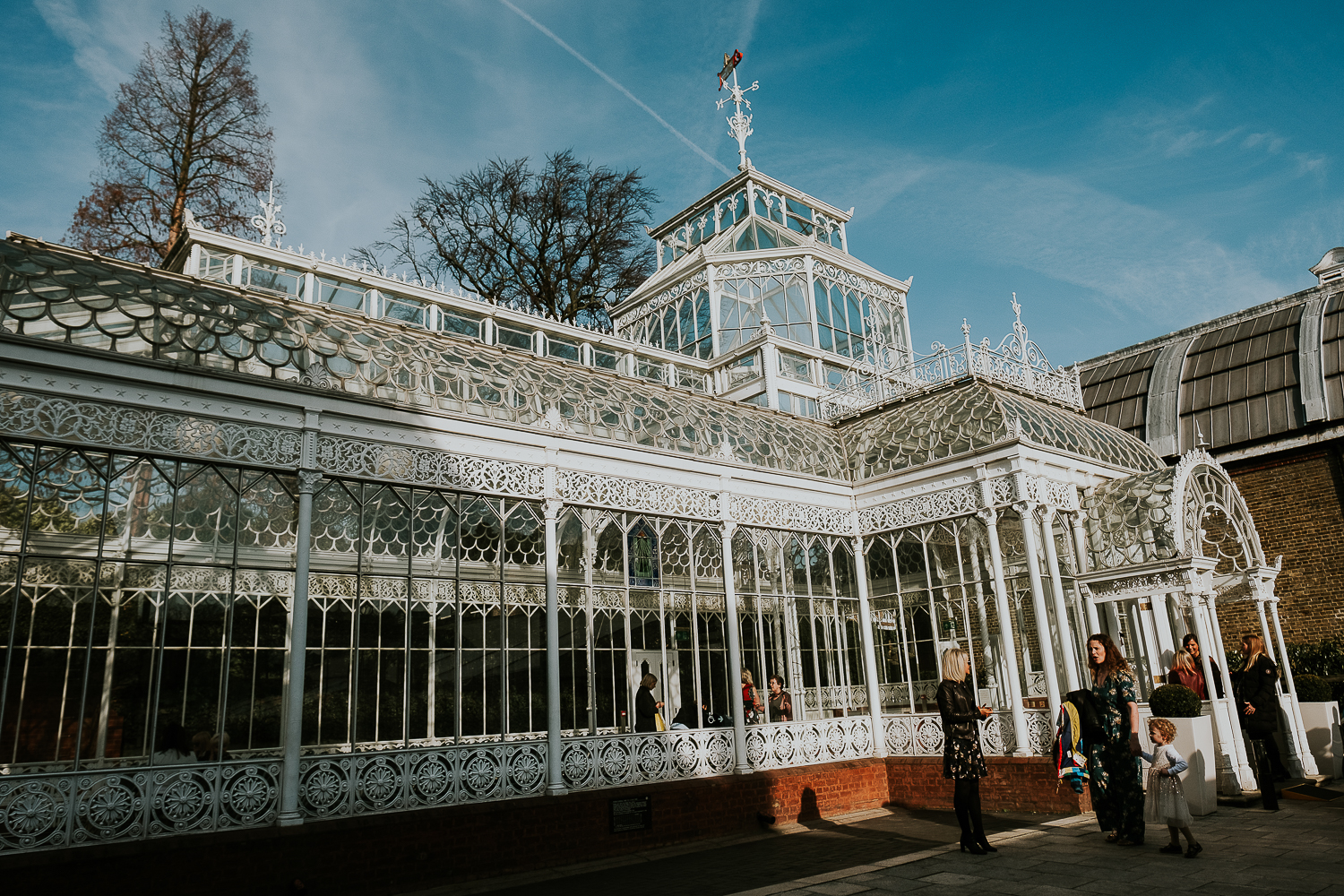 horniman museum conservatory london christening photography