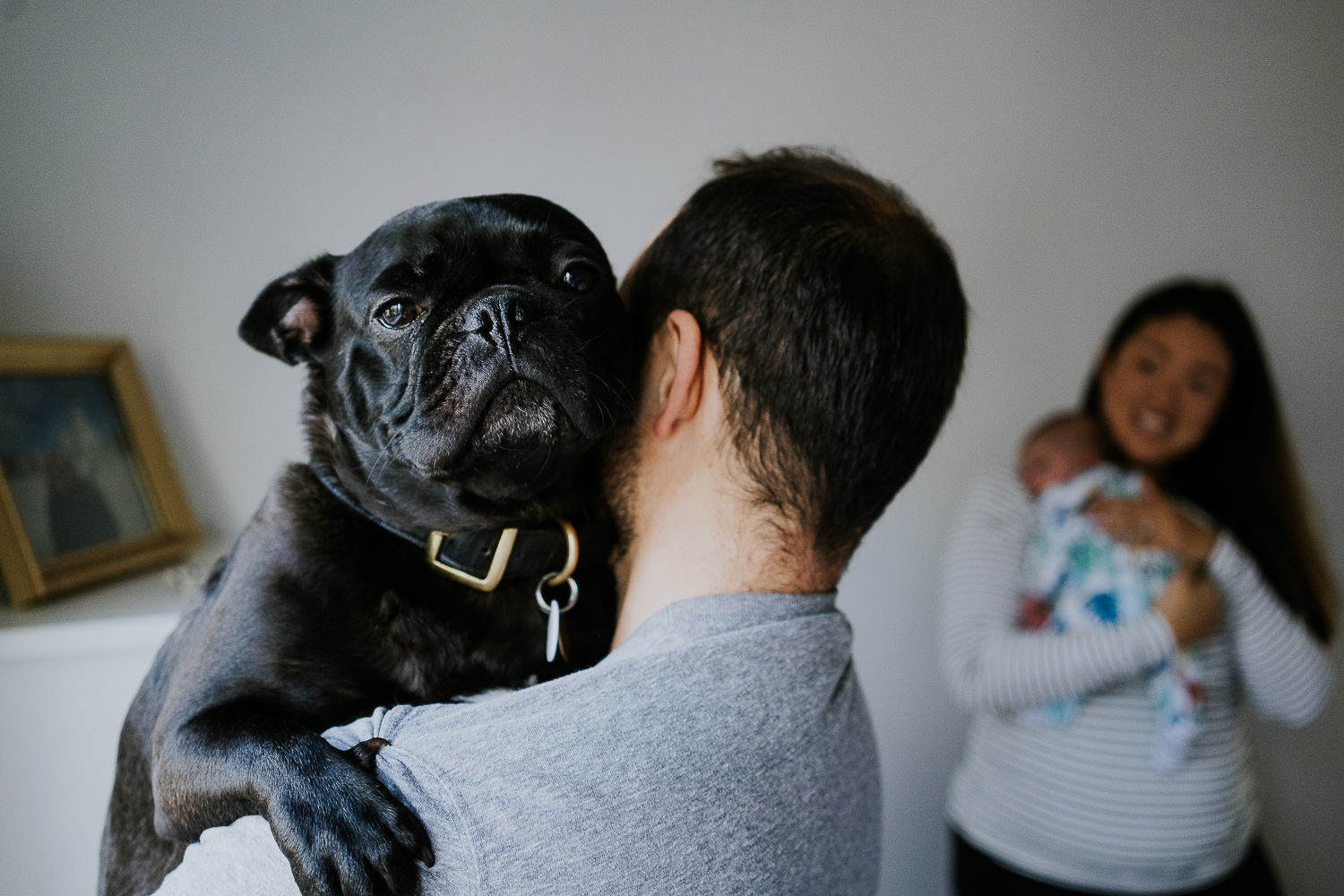 french bulldog new parents and baby