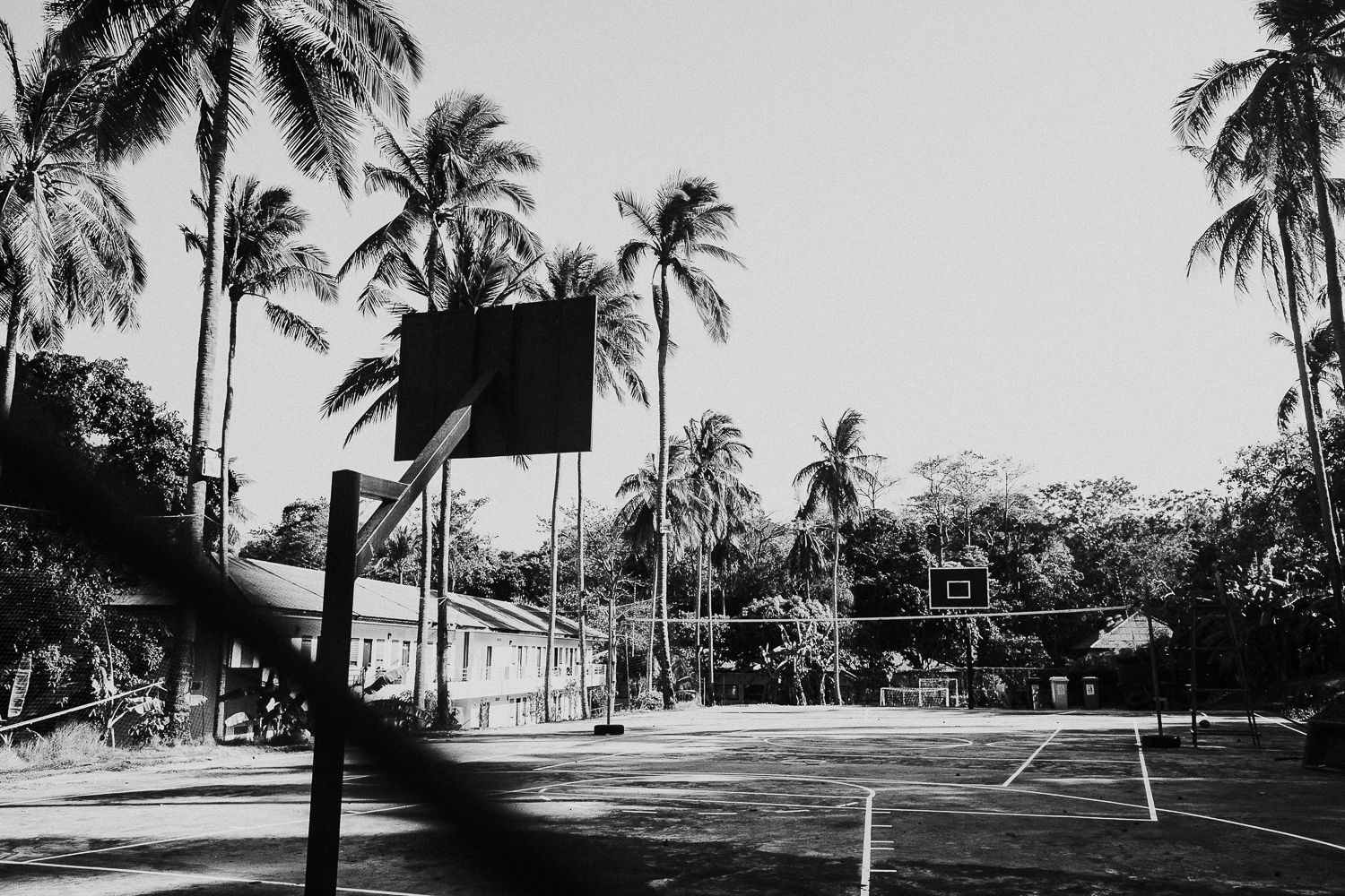 London family photography 2020 black and white basketball court in thailand with palm trees