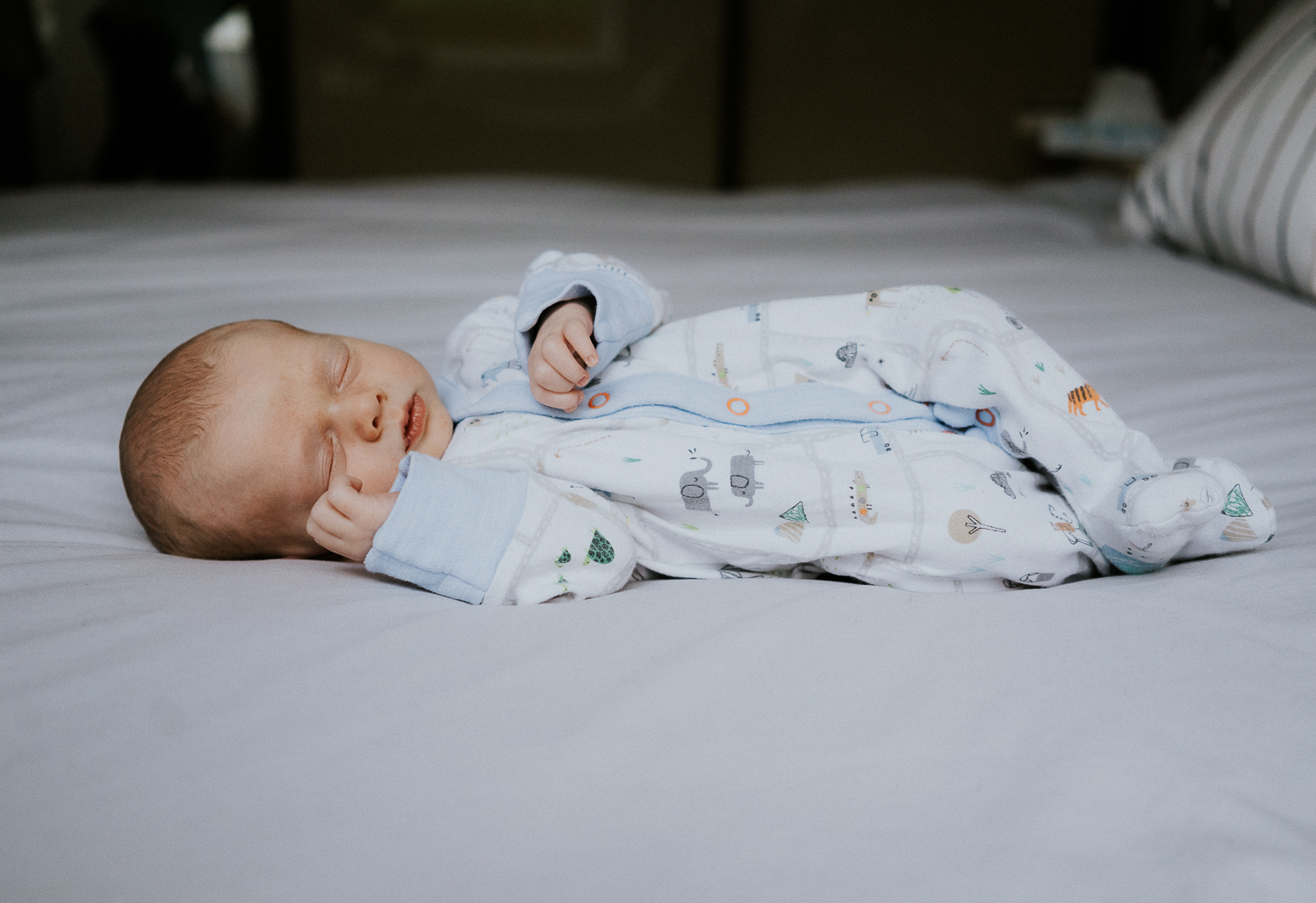 newborn photo session at home in highgate photo of baby boy