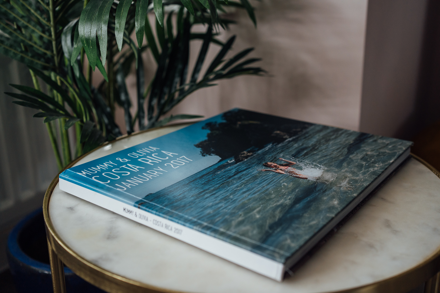 ORGANISING AND PRINTING YOUR PHOTOS PHOTO BOOK ON COFFEE TABLE WITH PLANT IN HOME